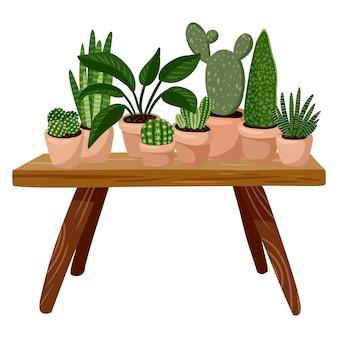 Table avec plantes en pot succulentes dessus.