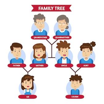 Tableau d'arbre généalogique dessiné à la main