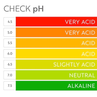 Tableau d'échelle de la valeur ph. infographie de l'équilibre acido-basique. affiche de l'éducation