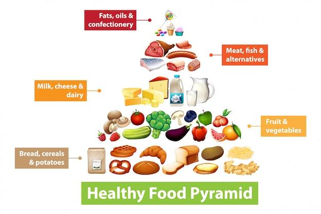 Tableau De La Pyramide Alimentaire Saine Vecteur gratuit