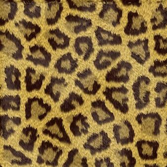 Taches de léopard fond