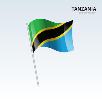 Tanzanie, agitant le drapeau isolé sur gris