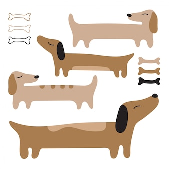 Teckel de chien charmant. longs chiens rouges.