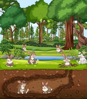 Terrier animal souterrain avec famille de lapins