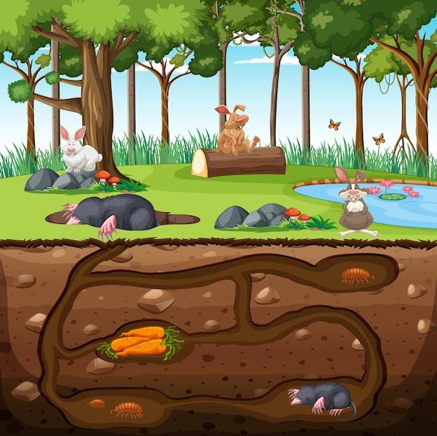 Terrier animal souterrain avec famille de taupes