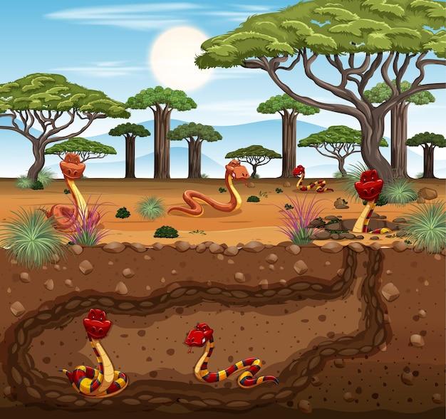 Terrier d'animaux souterrain avec une famille de serpents