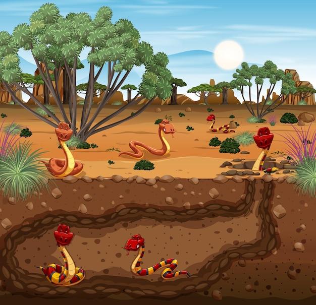 Terrier souterrain d'animaux avec famille de serpents