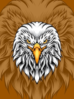 Tête d'aigle blanche