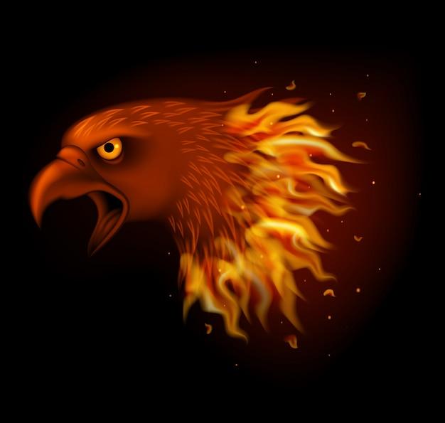 Tête d'aigle de feu isolé sur fond noir