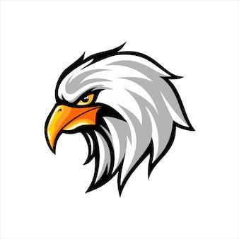 Tête d'aigle en illustration