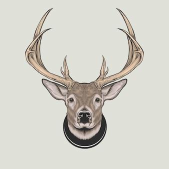 Tête de cerf à queue blanche en bois de cerf main dessin illustration vectorielle