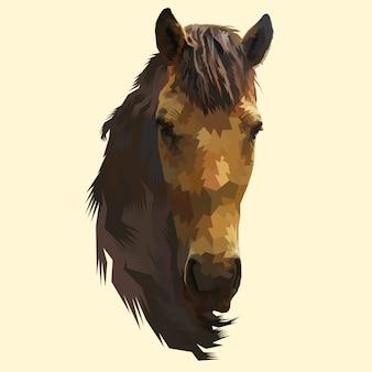 Tête de cheval isolée