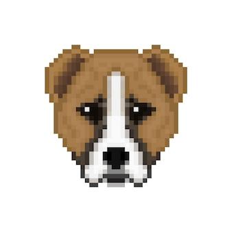 Tête de chien alabai dans un style pixel art