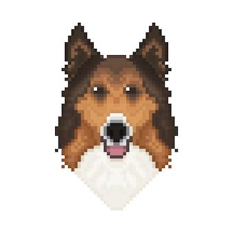 Tête de chien colley dans un style pixel art