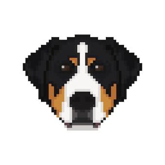 Tête de chien de montagne suisse dans un style pixel art.