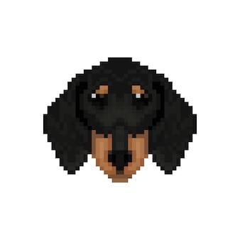 Tête de chien de teckel dans le style pixel art.
