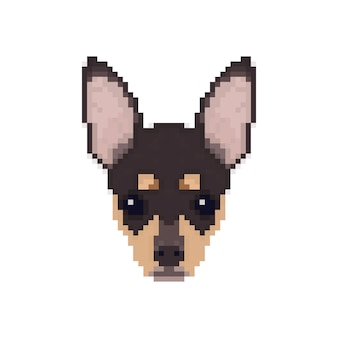 Tête de chihuahua dans un style pixel art.