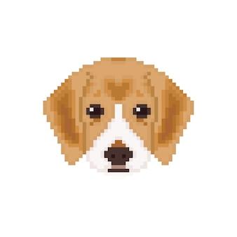 Tête de chiot beagle dans un style pixel art.