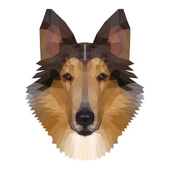 Tête de colley polygonale abstraite. arrière-plan de modèle de portrait moderne low poly collie pour t-shirt de conception, affiche de clinique vétérinaire, carte-cadeau, impression de sac, publicité d'atelier d'art, etc.