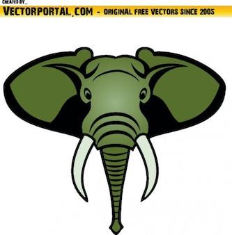Tête d'éléphant frontal