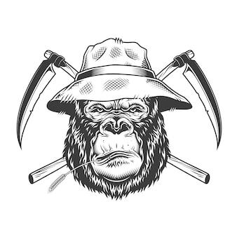 Tête de gorille sérieux au chapeau panama
