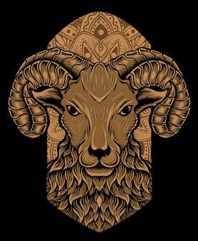 Tête de mouton isolé