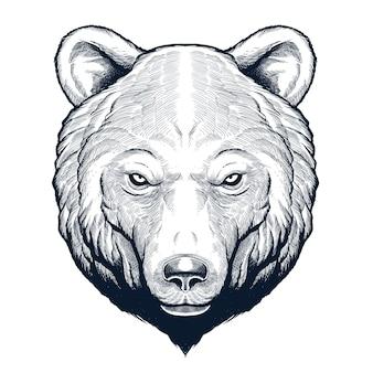 Tête d'ours grizzly dessinée à la main détaillée