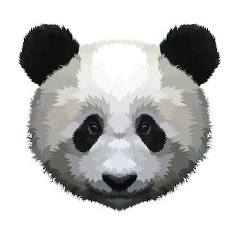 Tête de panda isolée sur fond blanc