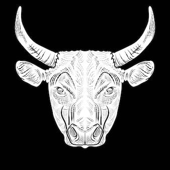 Tête de taureau dessiner gravure