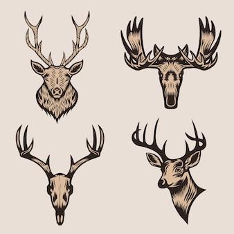 Têtes d'animaux de chasse