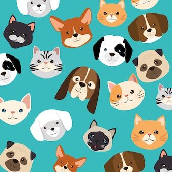 Têtes chiens et chats animaux de compagnie