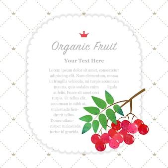 Texture aquarelle colorée nature cadre de mémo de fruits biologiques baies de rowan rouge