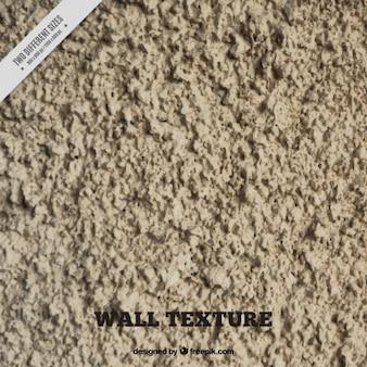 Texture brute du mur