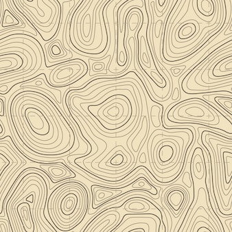 Texture de carte topographique sans soudure