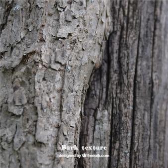 La texture du bois naturel incroyable
