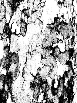 Texture d'écorce d'arbre grunge