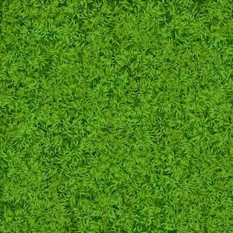 Texture d'herbe verte réaliste naturelle