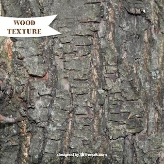 La texture naturelle de bois