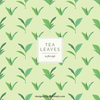 Thé feuilles fond style dessiné à la main
