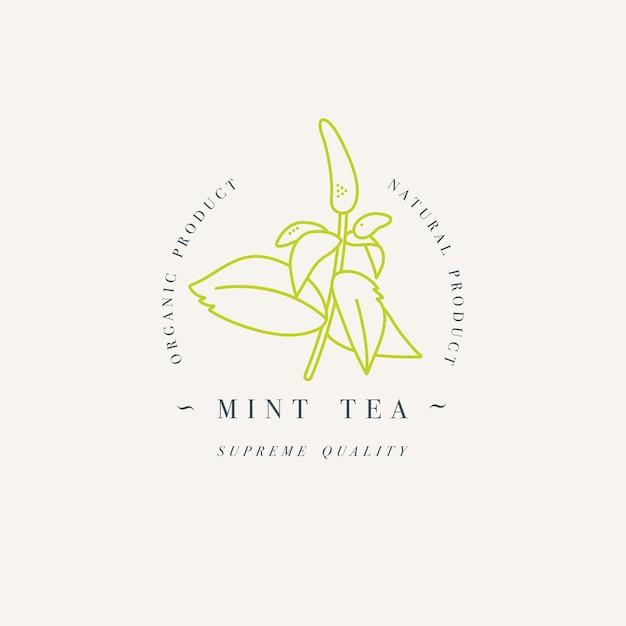 Thé à la menthe aux herbes bio. modèle de logo dans un style linéaire branché isolé