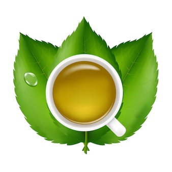 Thé vert avec des feuilles vertes fraîches, sur fond blanc, illustration