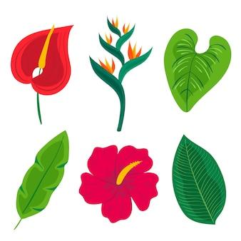 Thème de la collection de feuilles et de fleurs tropicales