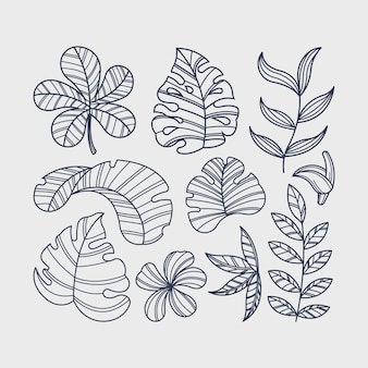 Thème de la collection de fleurs et de feuilles tropicales