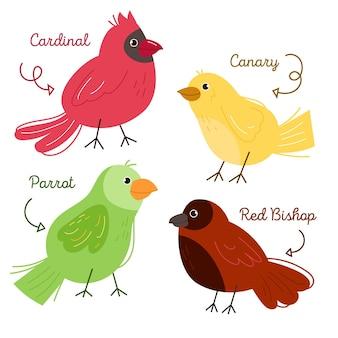 Thème de dessin de collection d'oiseaux