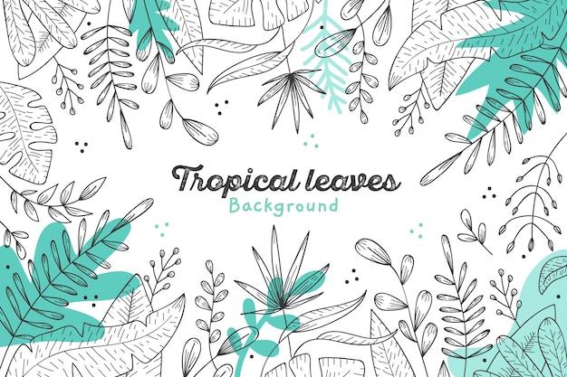 Thème de fond de feuilles tropicales