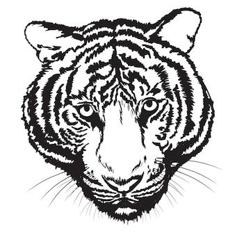 Tiger croquis main libre avec brosse numérique