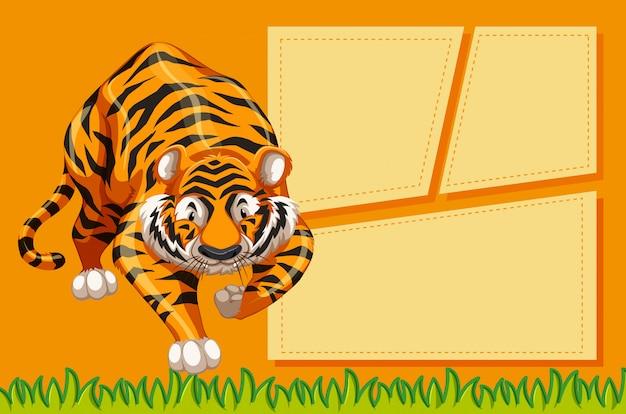 Tigre avec un cadre