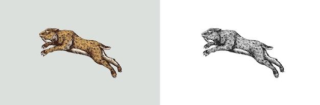 Tigre à dents de sabre ou chat ou smilodon mammifères préhistoriques animal éteint vecteur rétro vintage