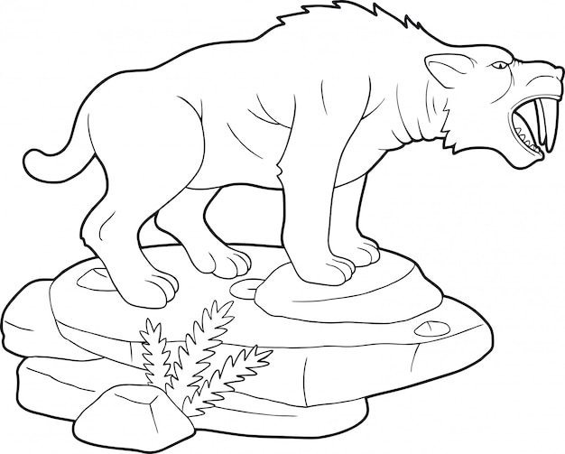 Tigre à dents de sabre