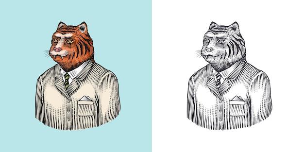 Tigre personnage bête docteur animal à la mode homme vitorien dans une veste dessinée à la main gravée